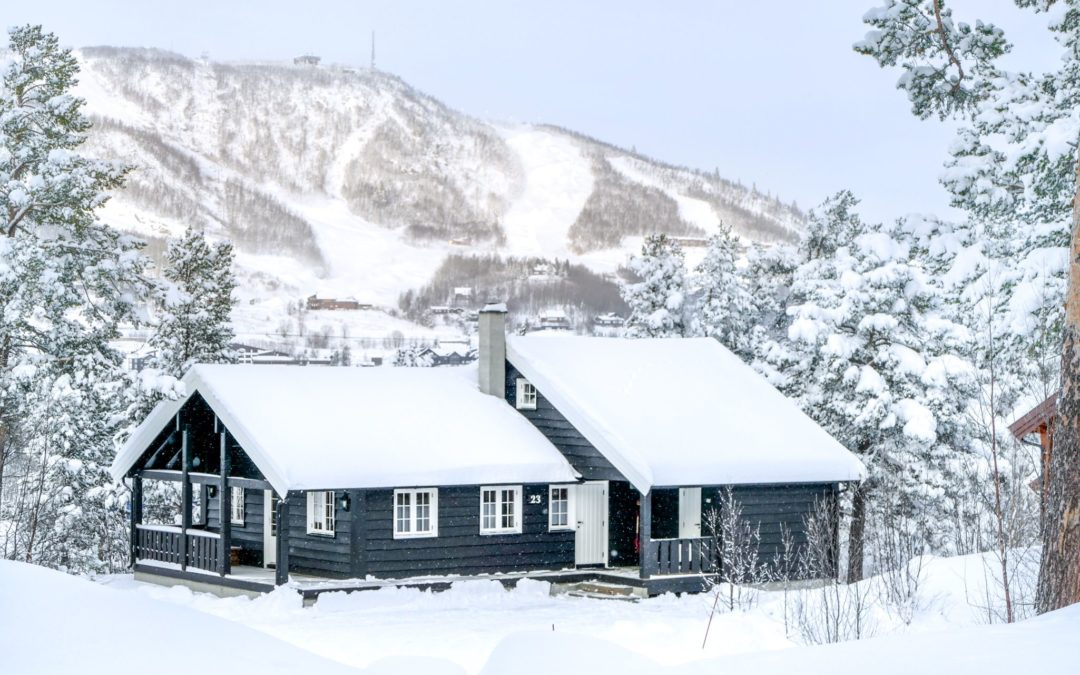 Cabins with 12 beds/5 bedrooms – Geilolia Hyttetun – Official Page