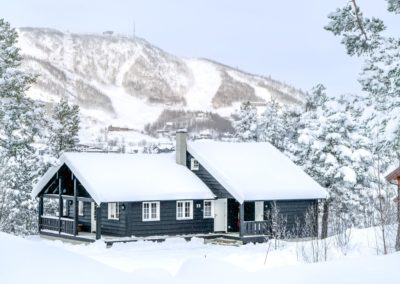 12-sengs vinter geilolia hyttetun