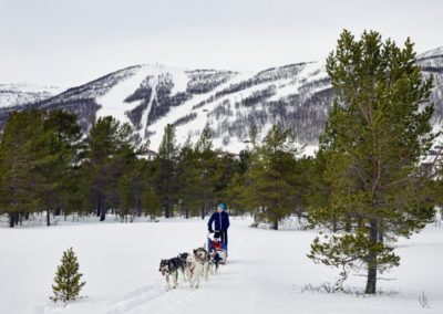 geilo-dog-sledding-winter-photo-emile-holba (Custom)
