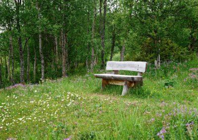 ustedalsfjorden-rundt-geilo-emile-holba (11)