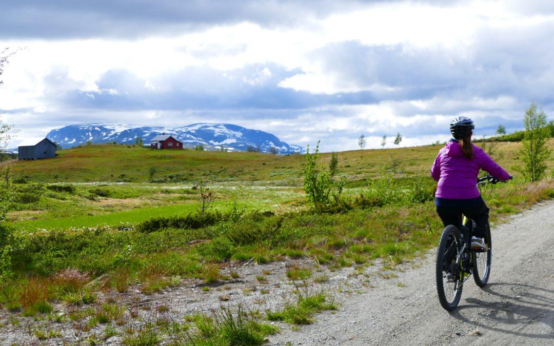 Sykkelturer på Geilo – Våre beste turtips